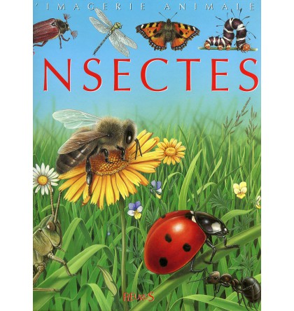 INSECTES (LES) COLL IMAGERIE ANIMALE