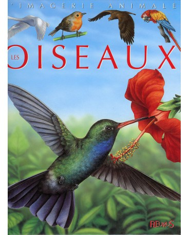 OISEAUX - COLL IMAGERIE ANIMALE