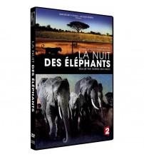 LA NUIT DES ELEPHANTS