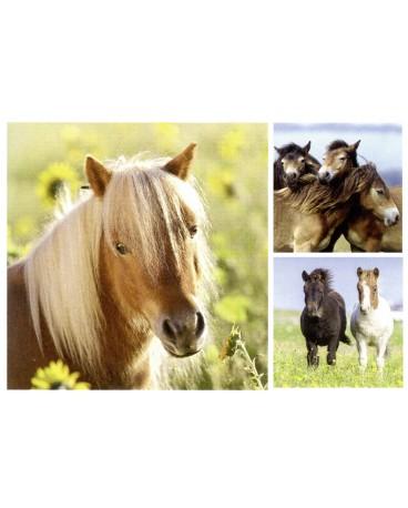 jolis poneys