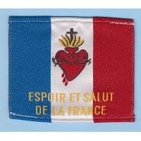 DRAPEAU S COEUR TISSU ESPOIR ET SALUT DE LA FRANCE 7 x 4 cm