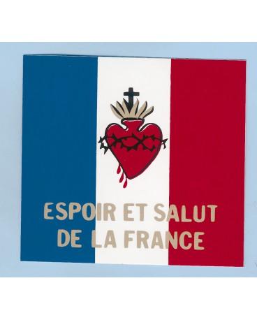 DRAPEAU SACRÉ COEUR (Loublande) ESPOIR ET SALUT DE LA FRANCE