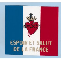 DRAPEAU SACRÉ COEUR ESPOIR ET SALUT DE LA FRANCE 9 x 9 cm