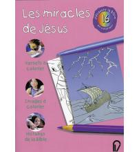 MIRACLES DE JESUS (LES)